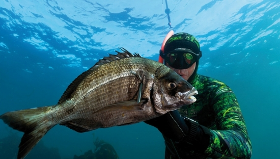 SHOP ON LINE SPEARFISHING FREEDIVING SNORKELING SCUBADIVING EQUIPMENTS in Ireland
