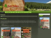 Baltic Timber