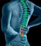 Protect your spine Back Pains & Silent Killers