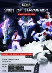 TAEKWONDO CLASSES FOR ADULTS AND CHILDREN SWORDS, DUBLIN