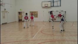 TAEKWONDO CLASSES FOR ADULTS AND CHILDREN SWORDS, DUBLIN