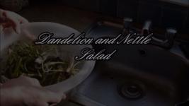 Dandelion and Nettle Salad