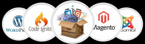 We provide Web Design & Development for local business in Ireland