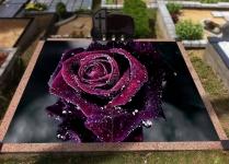 Graves headstones