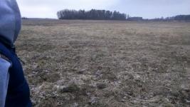 Parduodu, nuomoju sodyba - 11.15 ha sklypa Šilutes raj sav, Šyliu kaimas