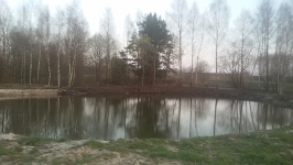 Juodzemis zvyras smelis 860625738 Vilnius Racioko nuoma