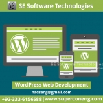Website Making Services By SE Software Technologies