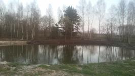 Ekskavatoriaus nuoma, poliu grezimas +37060625738 Vilnius
