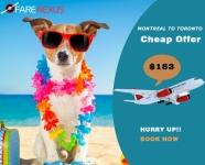 Return flight Montreal to toronto Only $183