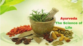 Ayurveda Doctors and Treatments in Arkansas, United States