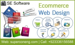 Professional eCommerce website design and development