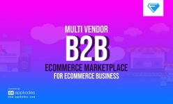 Multi Vendor B2B Ecommerce Marketplace for Ecommerce Business