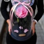 Miegančios gėlės ir pristatymas Vilniuje