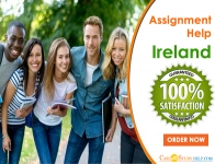 Get the Best Assignment Help Ireland with Case Study Help
