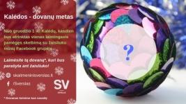 Kalėdinės akcijos – Svetainių kūrimas, SEO paslaugos