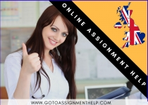 Assignment Help Online: The affordable solution to your academic problems.