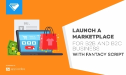Launch a marketplace for b2b and b2c business with fantacy script now on 50% off