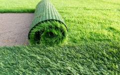 Lawn Turf Grass Sod Roll | Lawn Turf Grass Sod Roll‎