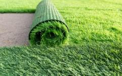 Lawn Turf Grass Sod Roll | Lawn Turf Grass Sod Roll