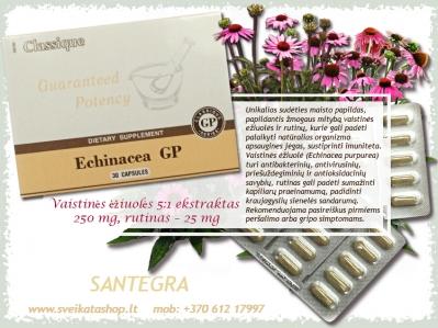 Echinacea GP 30 kaps - SANTEGRA