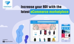 Increase Your ROI with the latest ecommerce marketplace script