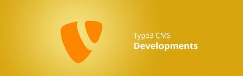 Typo3 development services