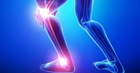 knee & ankle pain relief spray or gel online India