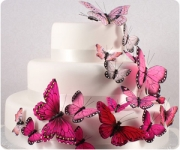 Cake Decorating Supplies - decorate cakes in any style!