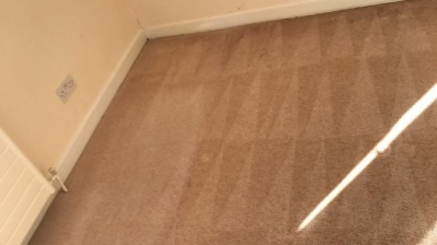 Eco Carpet Cleaning Services