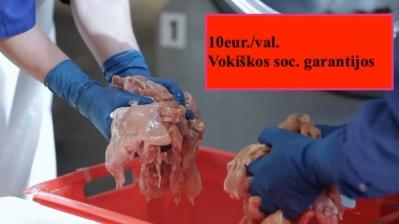 Pakavimo fabrikas Vokietijoje 10eur./val.