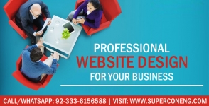 Professional Business Website Designing Service