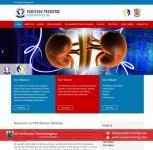 Professional Business Website Designing Service