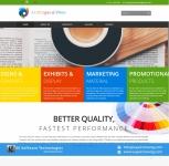 Professional & Attractive Website Design Service