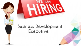 Sales/Business Development Executive