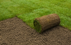 Artificial Grass Supplier in Dublin, Ireland